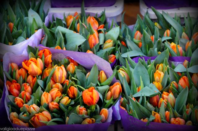Mercato dei fiori tulipani Amsterdam