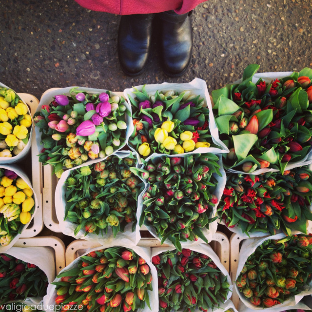 Tulipani mercato dei fiori