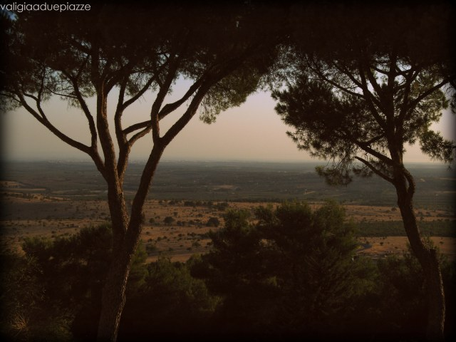 Il paesaggio dell'Alta Murgia