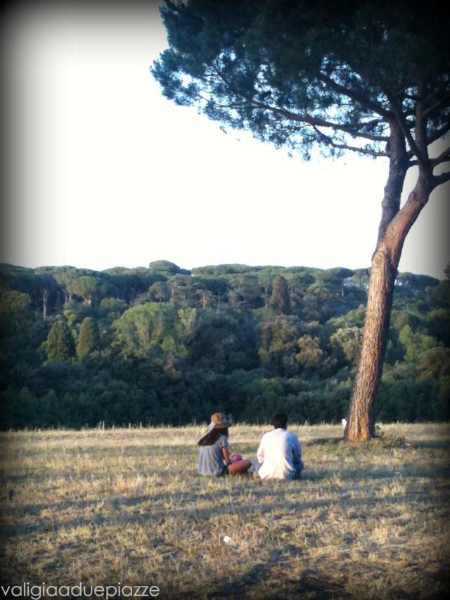 La pineta di Villa Pamphili