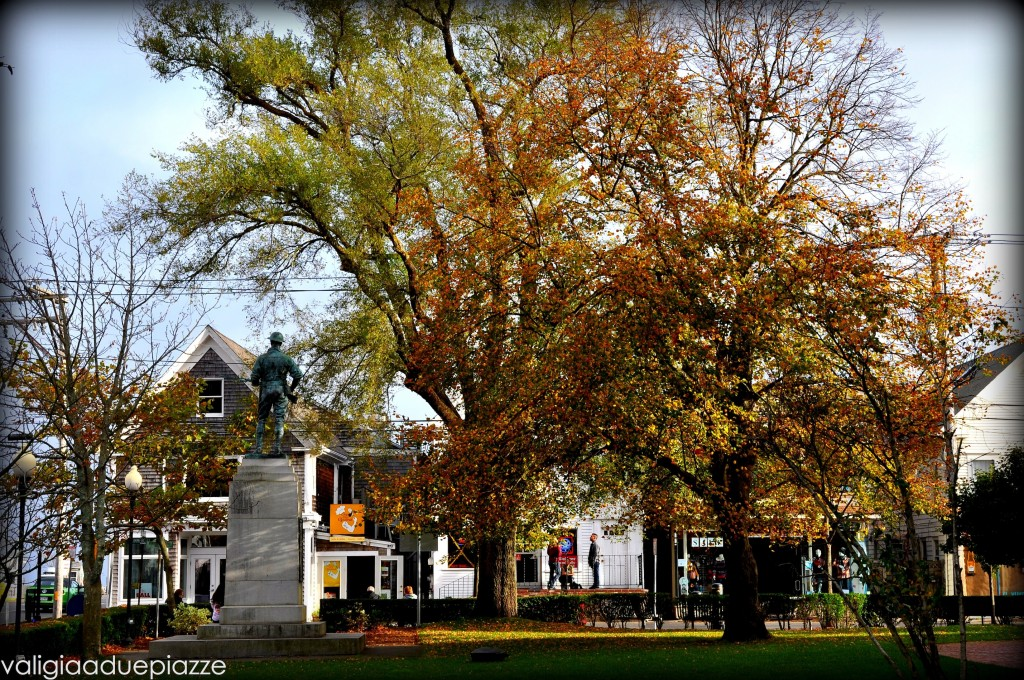 foliage provincetown
