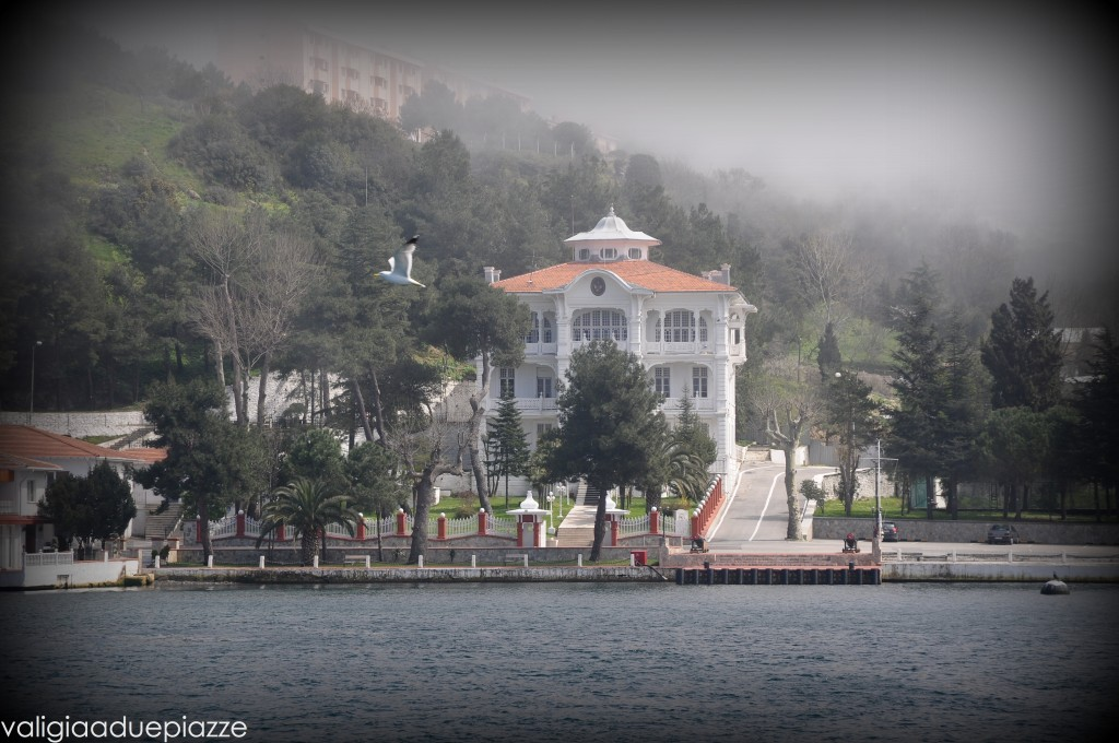 Nebbia Anadolu Kavagi