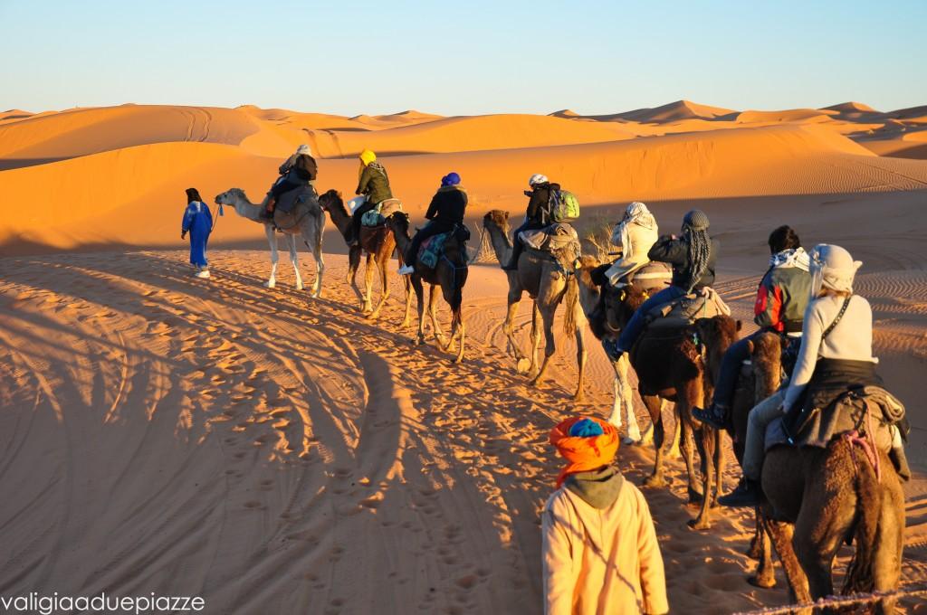 Camel tour Sahara Erg Chebbi