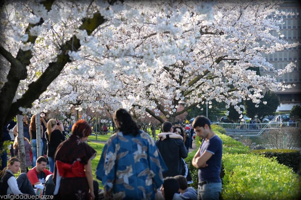 abiti tradizionali giapponesi hanami