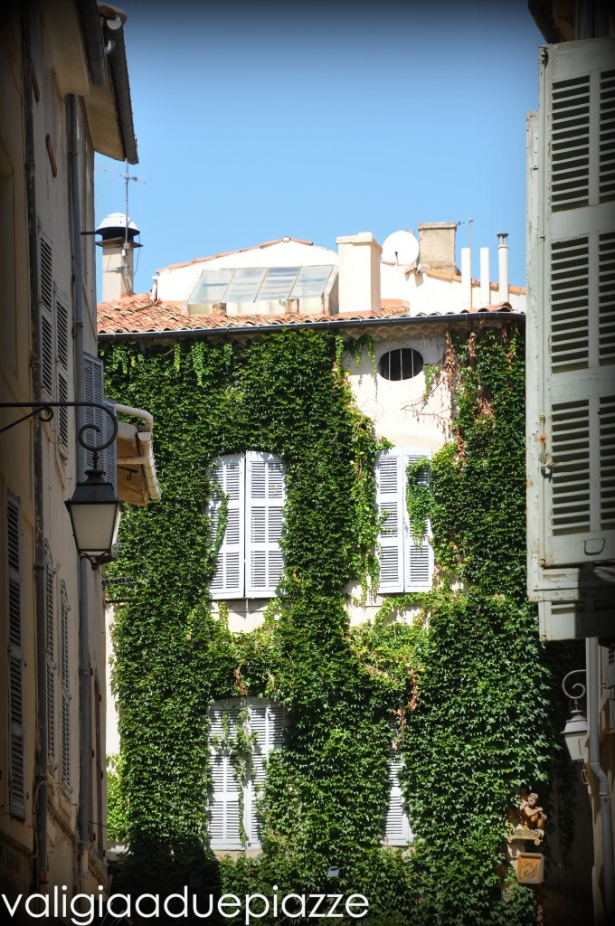 Edera sulle case - vacanza ad Aix en Provence