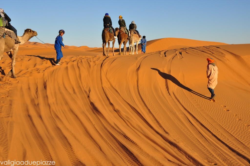 Sahara Camel Tour