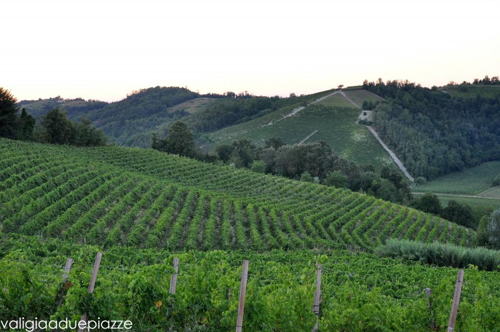 Colline Monferrato Unesco