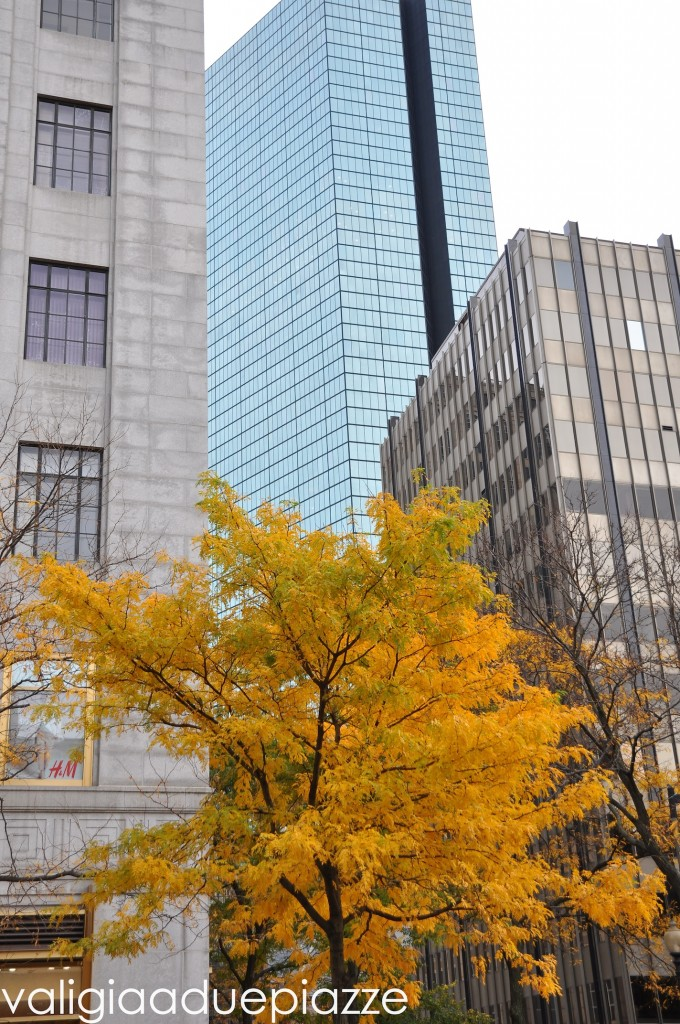 prudential center foliage
