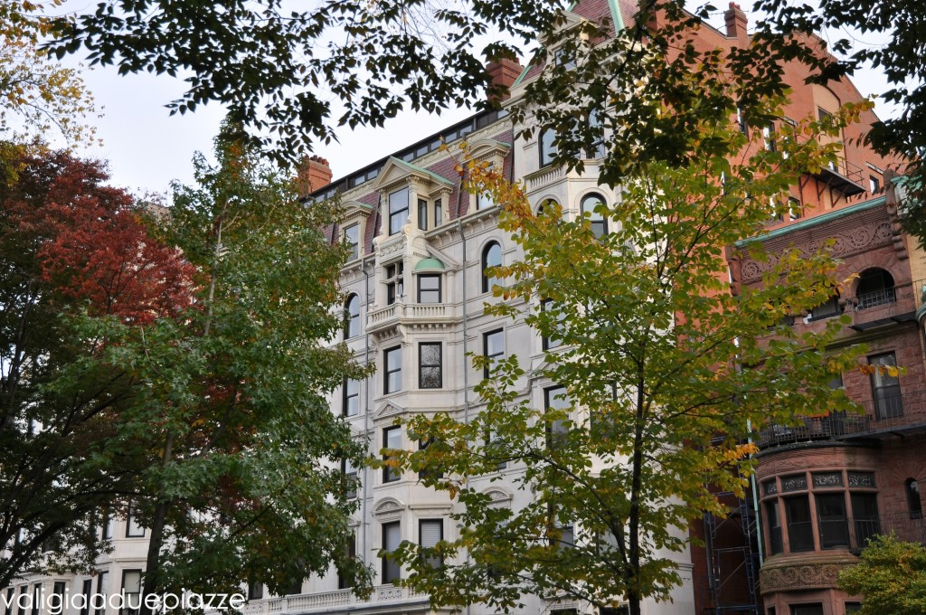 foliage back bay boston