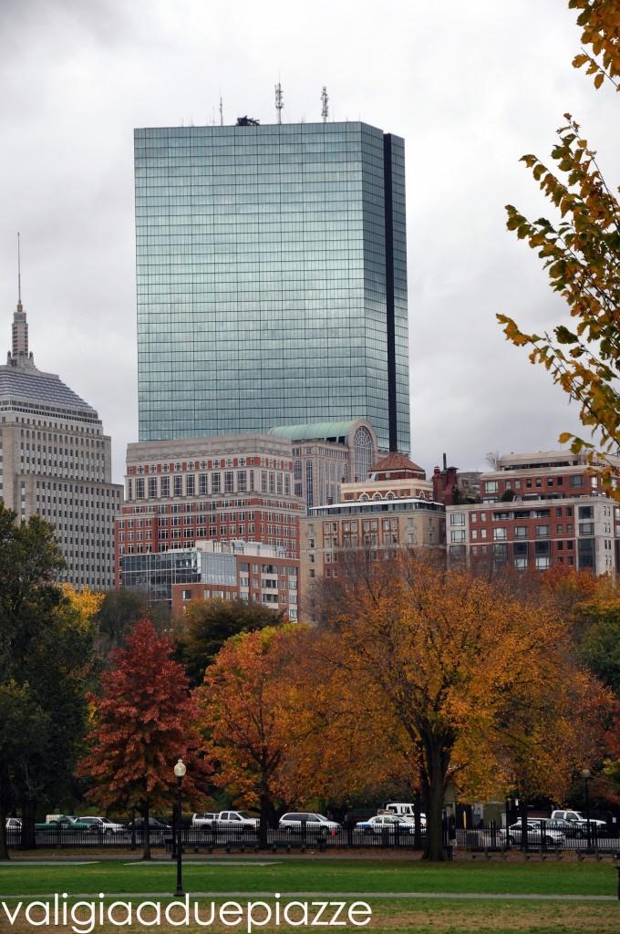 foliage boston common