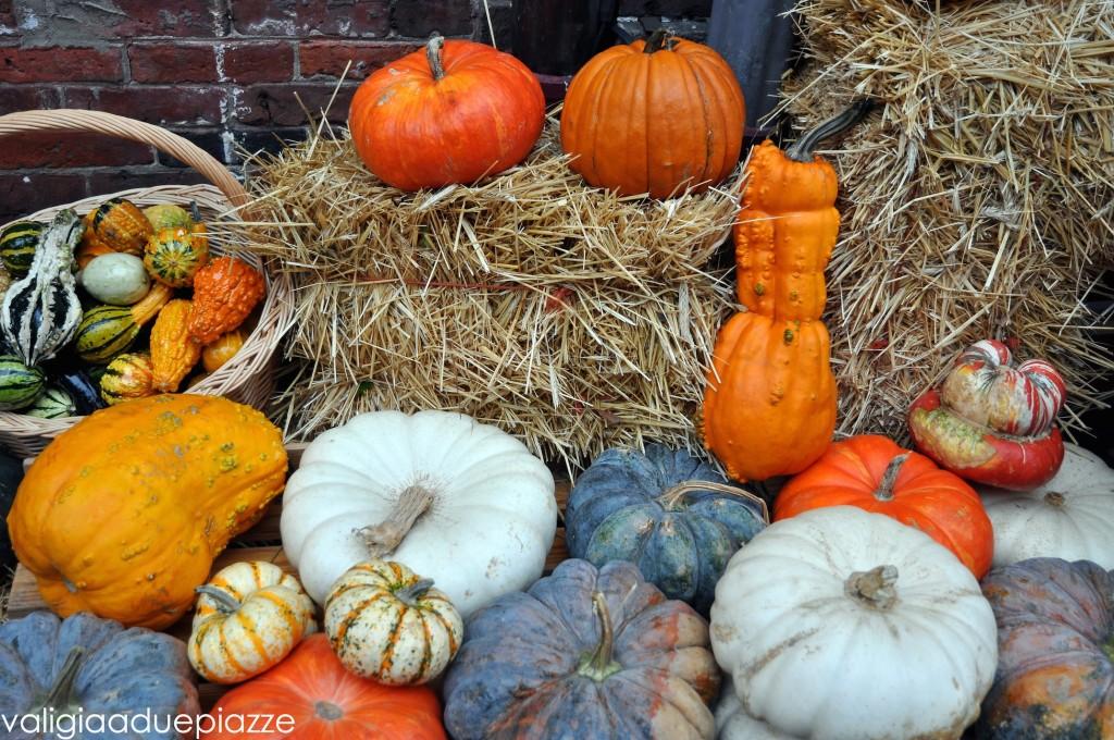 zucche halloween boston