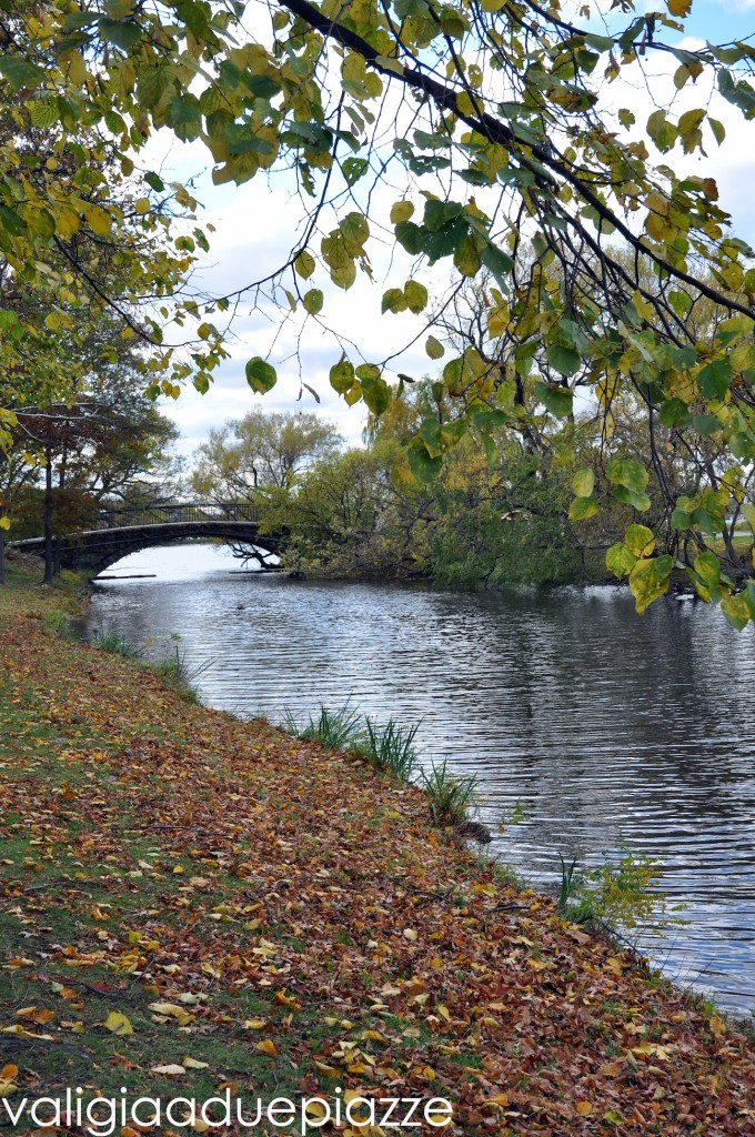 passeggiata lungo il fiume charles boston