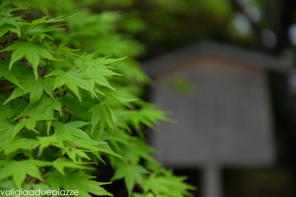 giardino zen komorebi