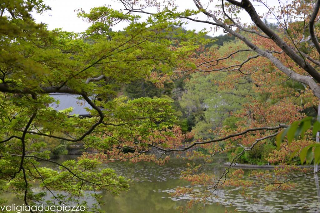 padiglione d'oro komorebi kyoto