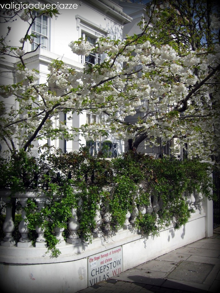 londra fiori primavera