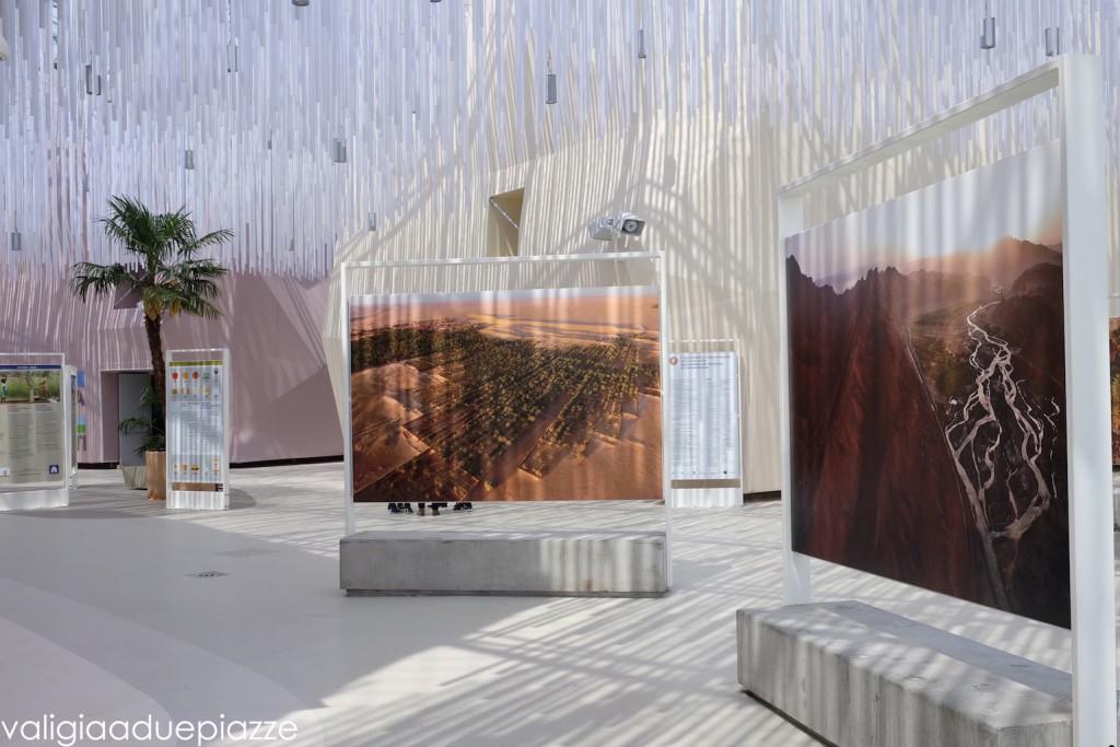 Il cluster delle zone aride della terra a Expo Milano 2015