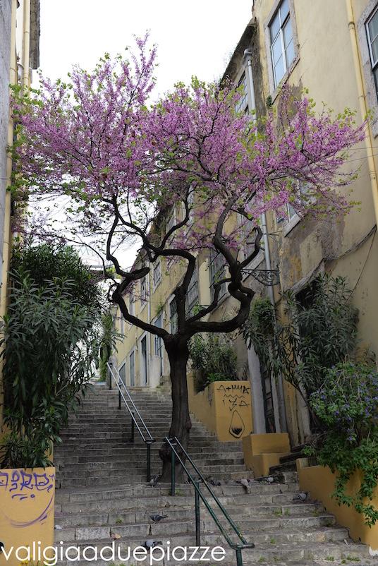Le scalinate del Bairro Alto di Lisboa.