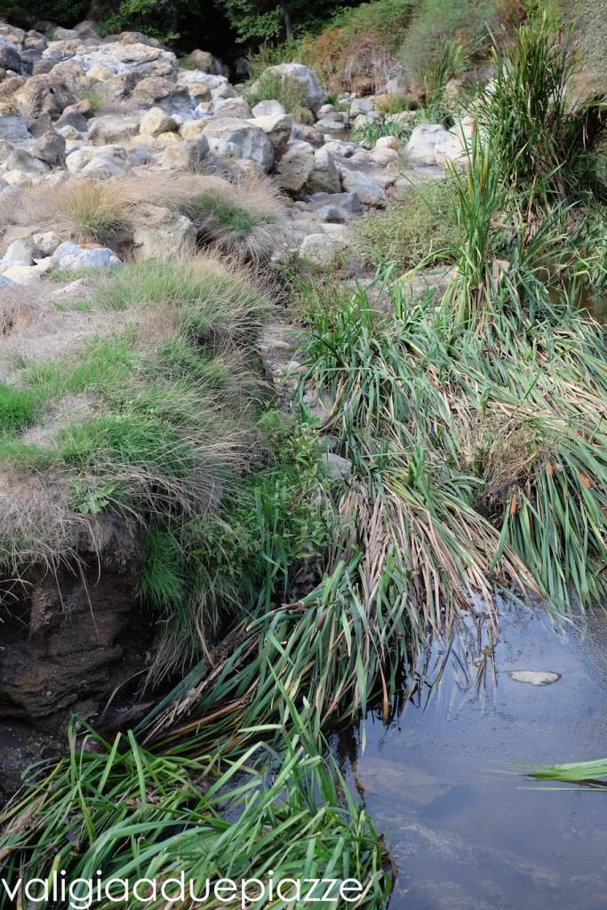 cascate disorla canale monterano