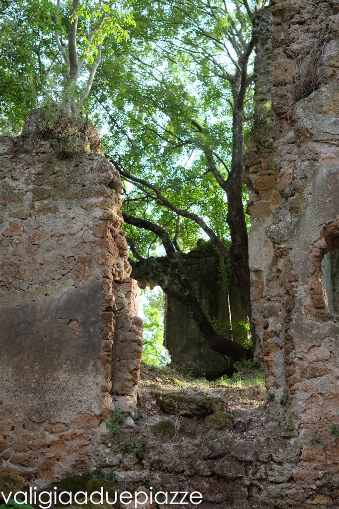 rovine canale monterano