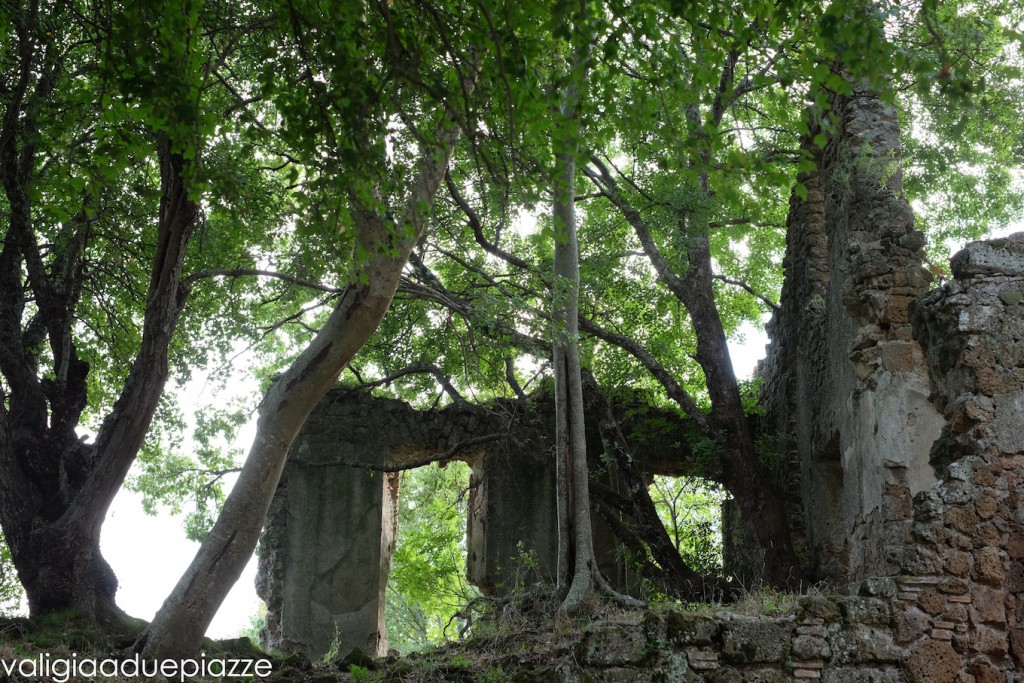 antica monterano rovine città perduta
