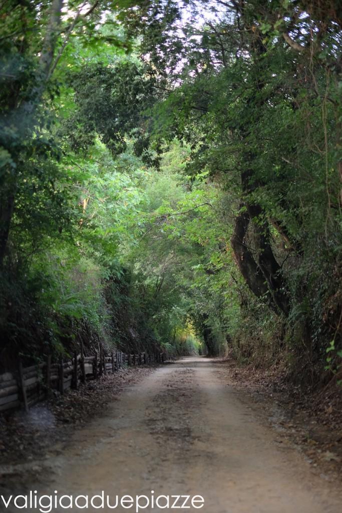 percorso antica monterano parco regionale