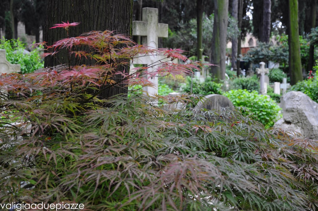 cimitero non cattolico roma giardino