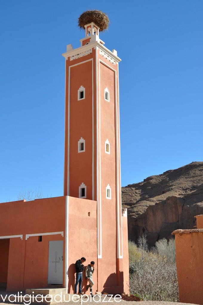 nido cicogna alto atlante marocco