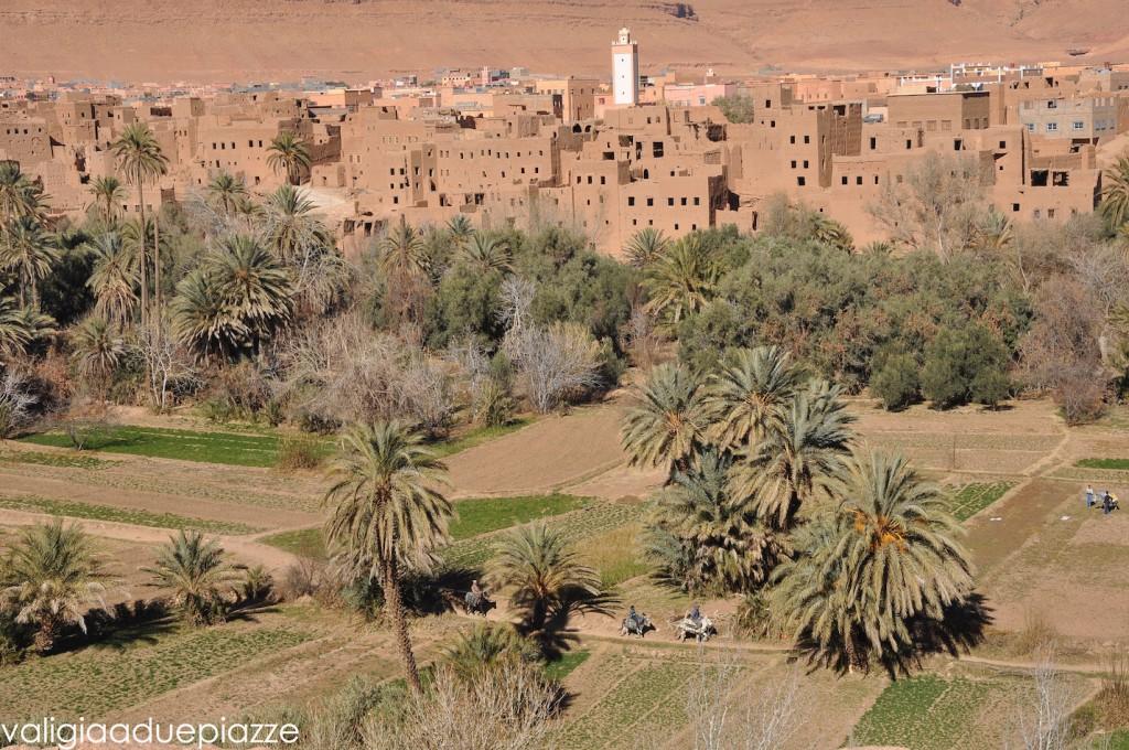 palmeraie skoura marocco