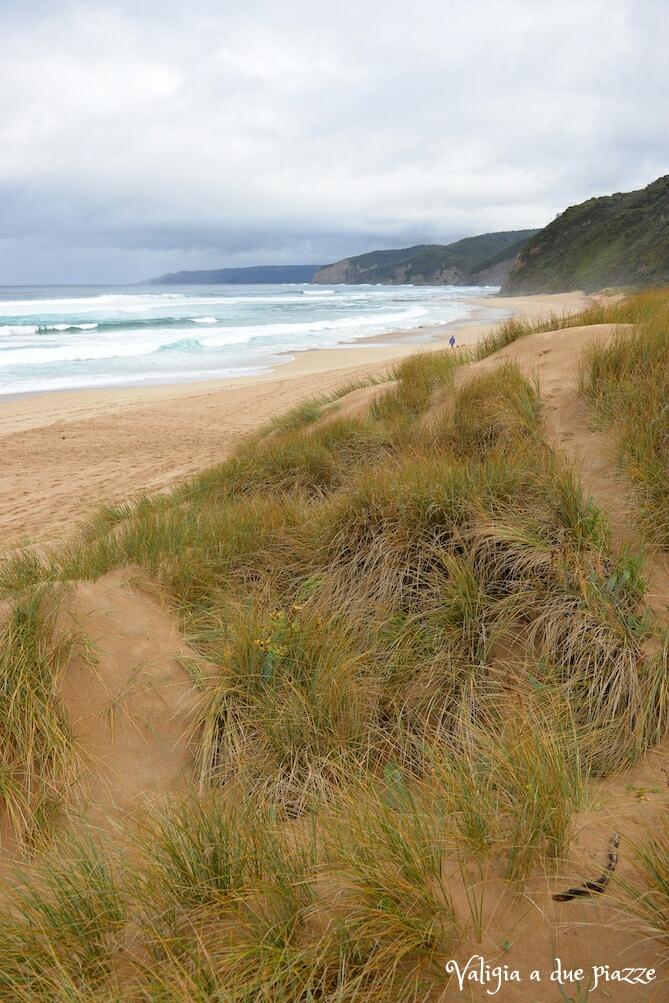 Johanna beach great ocean road australia