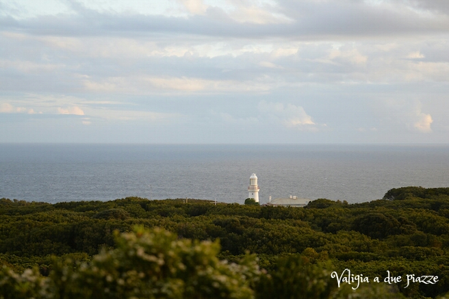 Cape Otway Australia