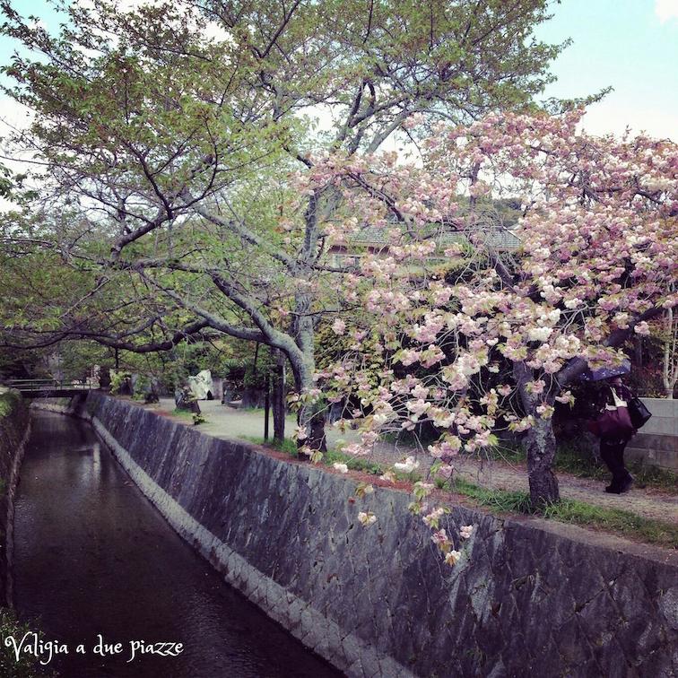 Passeggiata del Filosofo, Tetsugaku-no-michi Kyoto