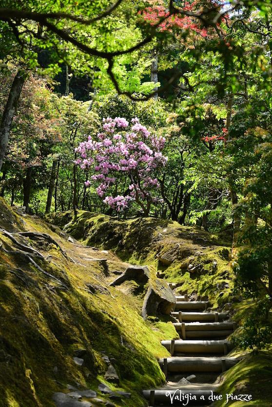 komorebi kyoto giappone giardino