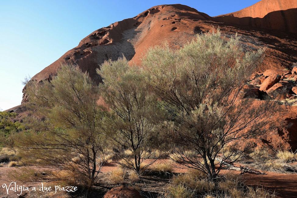 Base Walk Uluru