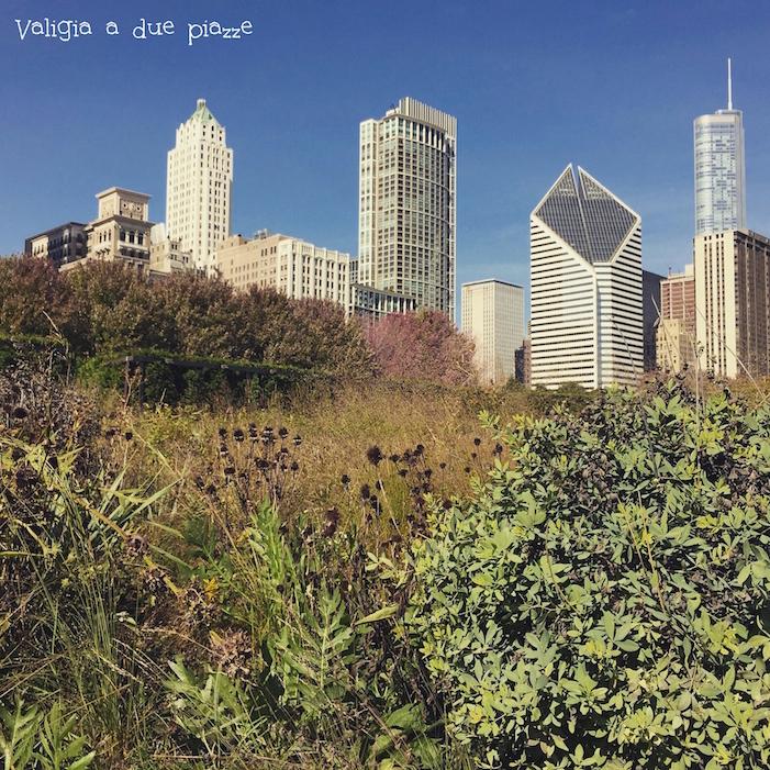 Millennium Park Chicago - tre giorni