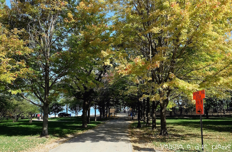 Olive Park Chicago