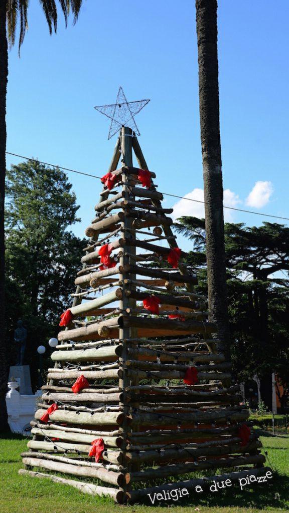 albero di Natale argentina