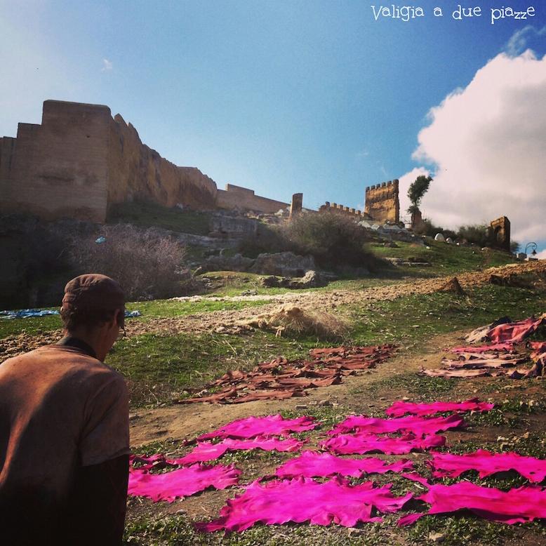 pelli essiccate al sole Fes Marocco