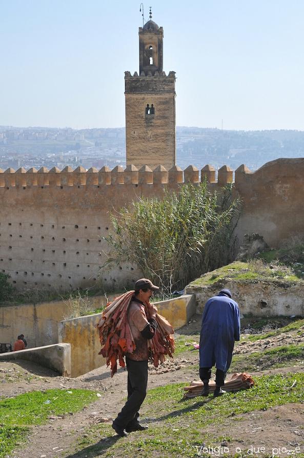 pelli essiccate fes marocco