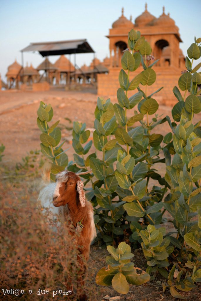 Sunset Point Jaisalmer Golden City