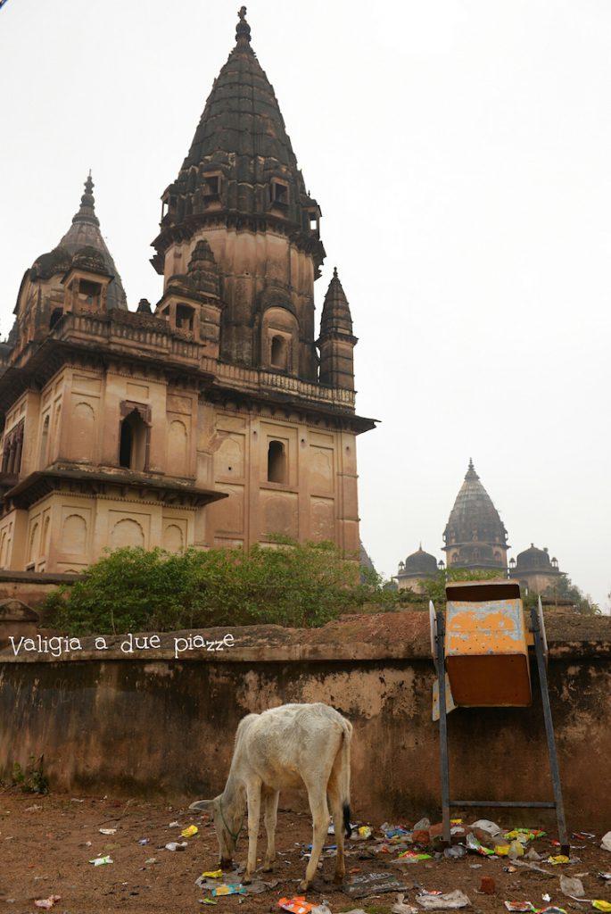 orchha madhya pradesh india