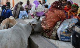 """Che cosa significa viaggiare in India. """"Lion – La strada verso casa"""""""