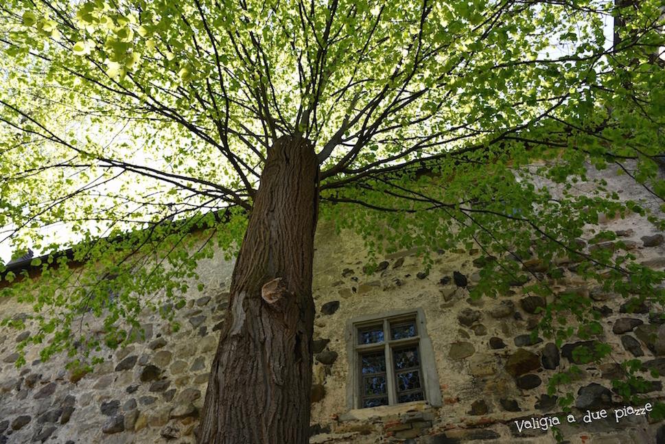 giardino castello di Meersburg