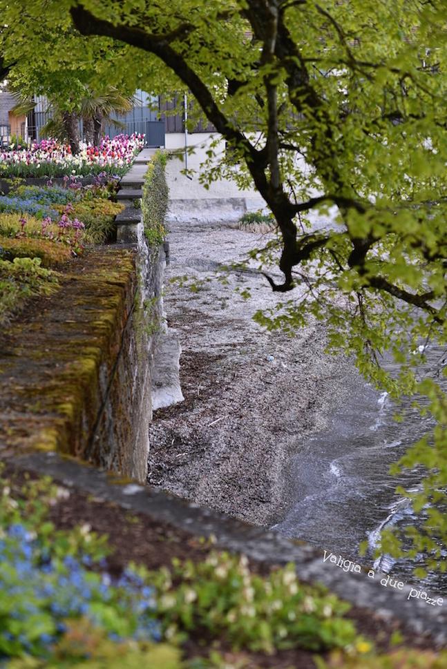 canale Lago di Costanza insel