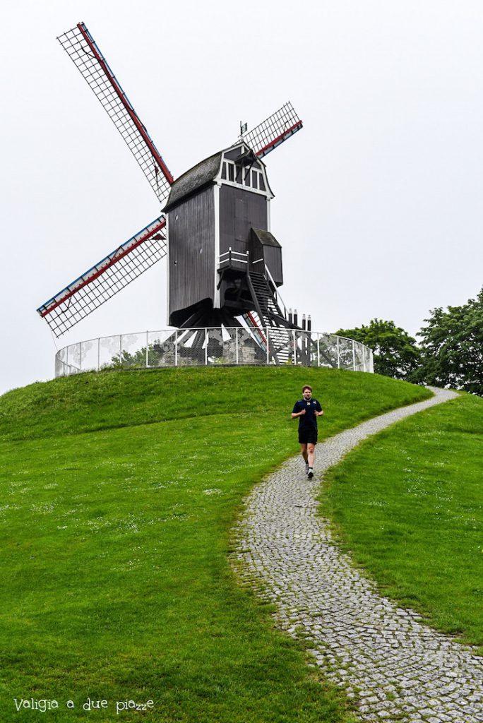 Bruges mulino a vento