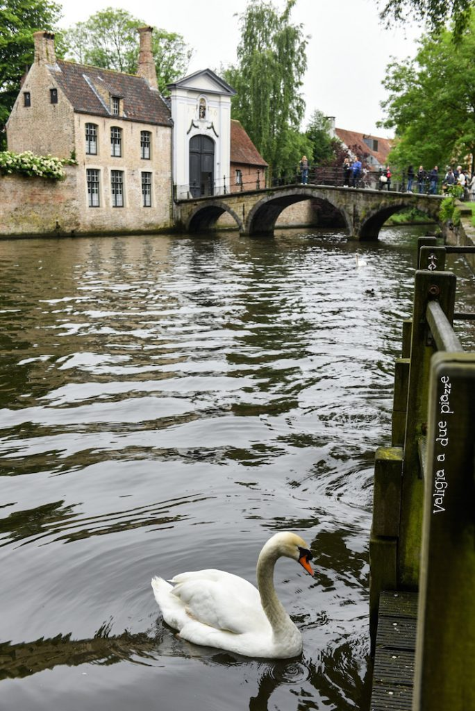 Minnewater lago dell'amore Bruges