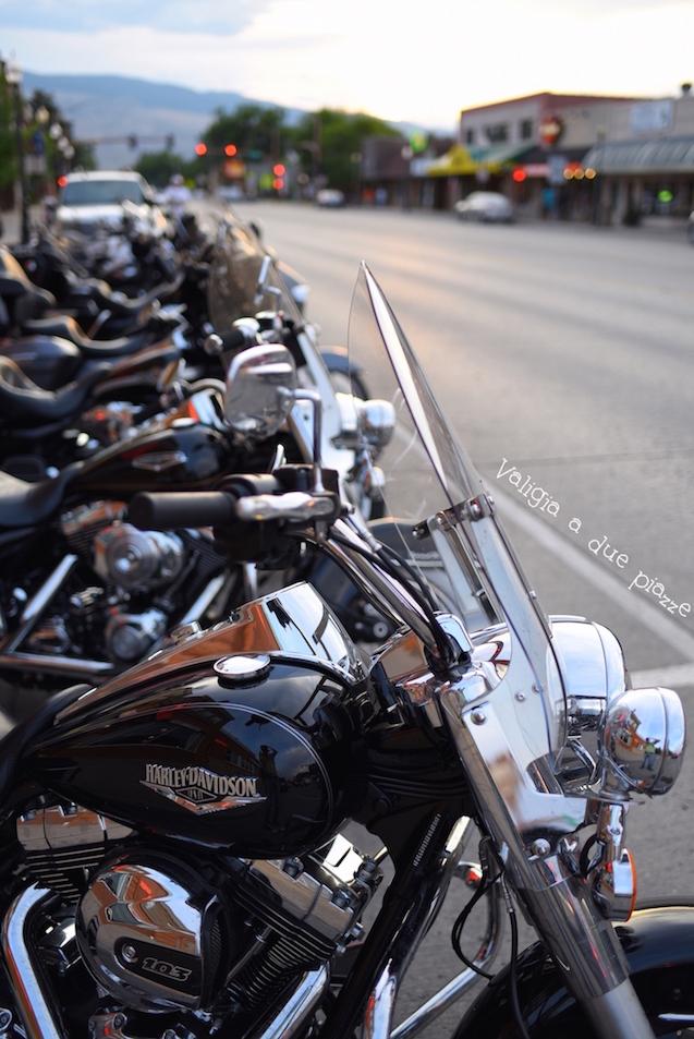 Harley Davidson Cody