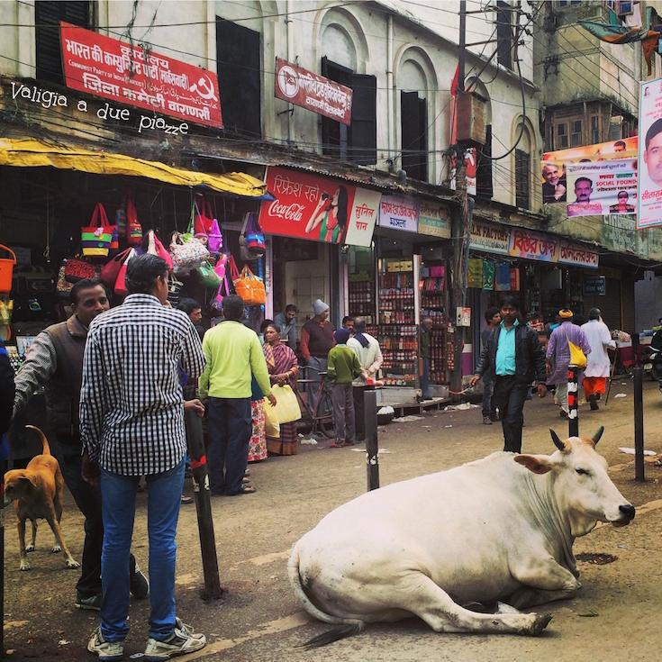 In India non è necessaria alcuna profilassi specifica, però portate con voi un buon disinfettante.
