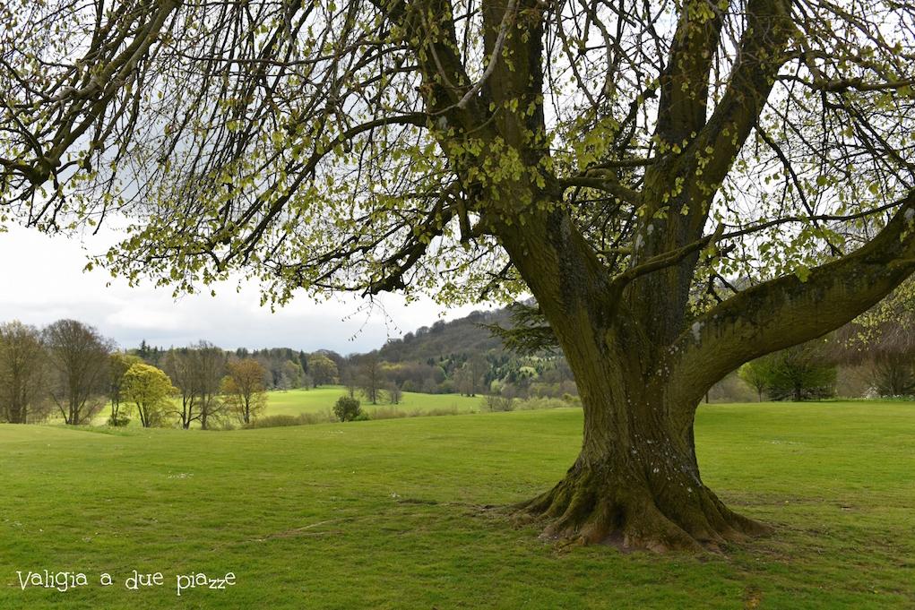parco downton abbey hampshire