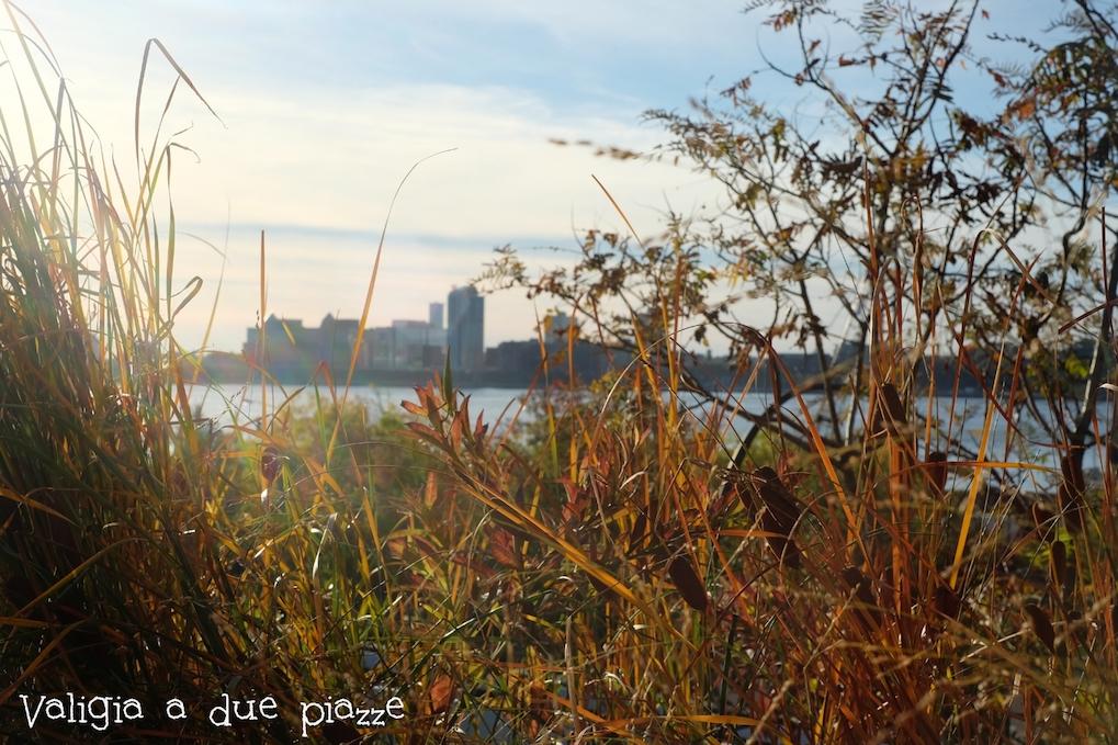 New Jersey visto dalla High Line