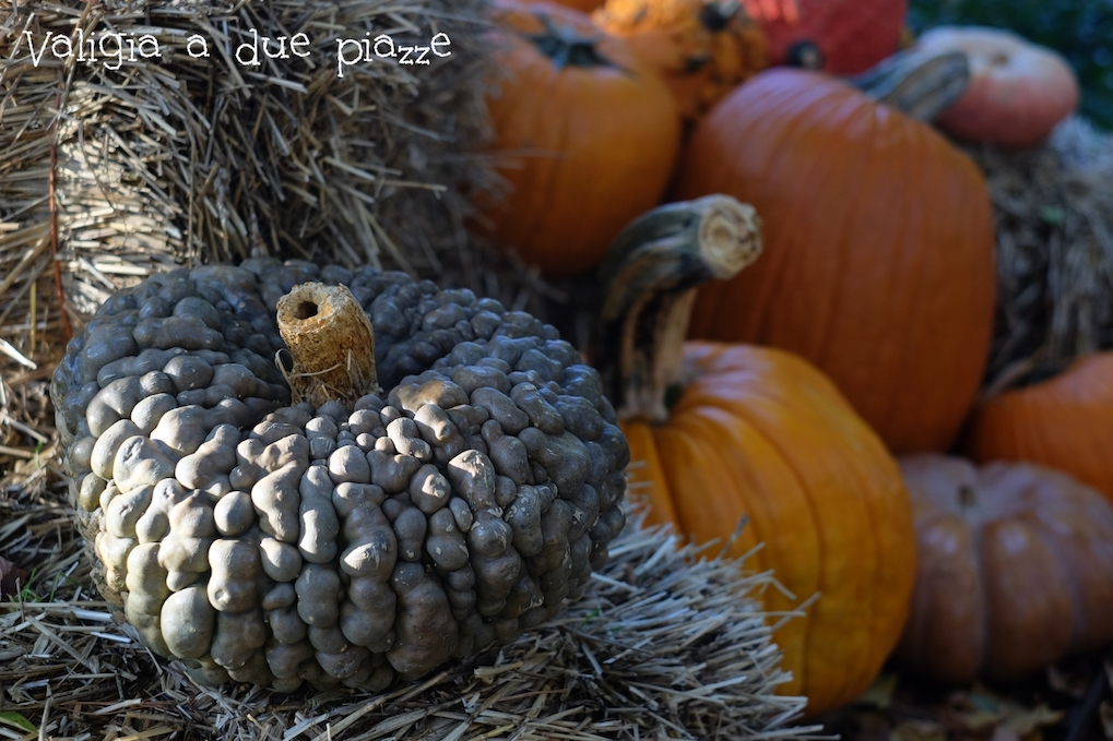 halloween nybg bronx